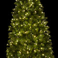 Load image into Gallery viewer, 6.5' Royal Fir Slim Quick-Shape Artificial Christmas Tree with 500 Warm White & Multi-Color Color LED Lights
