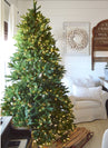 Load image into Gallery viewer, 7.5' King Fraser Fir Quick-Shape Artificial Christmas Tree with 1000 Warm White & Multi-Color LED Lights
