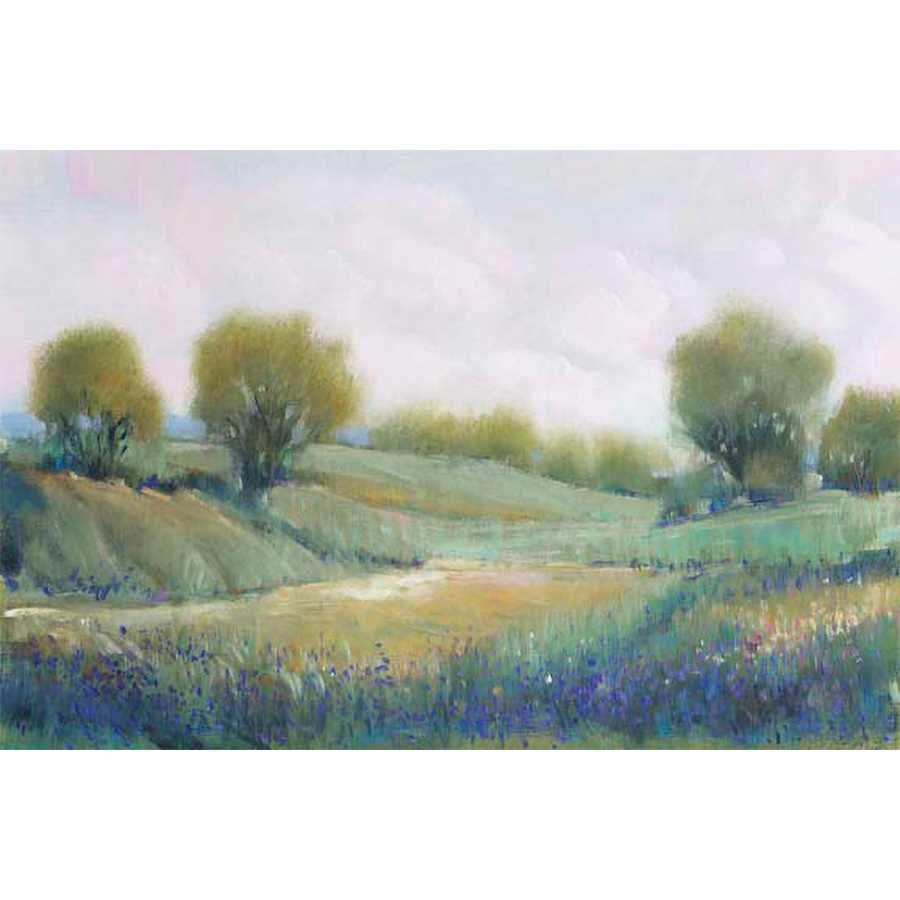 PAYSAGE I by Tim O'Toole , Item#CG002321C, Matte Canvas, Art, Giclée on Canvas, Horizontal, Medium