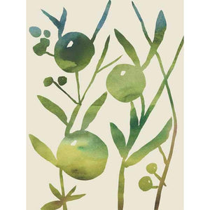 SPRING SPRIG IV by Chariklia Zarris , Item#CG002336C, Matte Canvas, Art, Giclée on Canvas, Vertical, Small