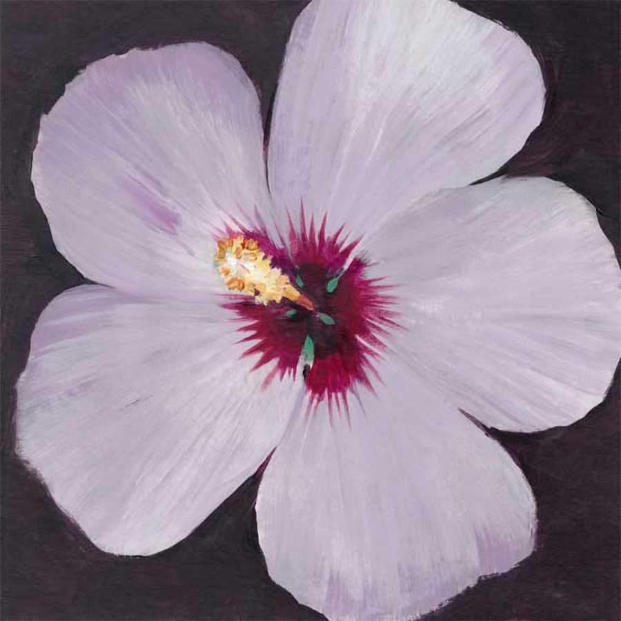 HIBISCUS PORTRAIT I by Tim O'Toole , Item#CG004390C, Matte Canvas, Art, Giclée on Canvas, Square, Small