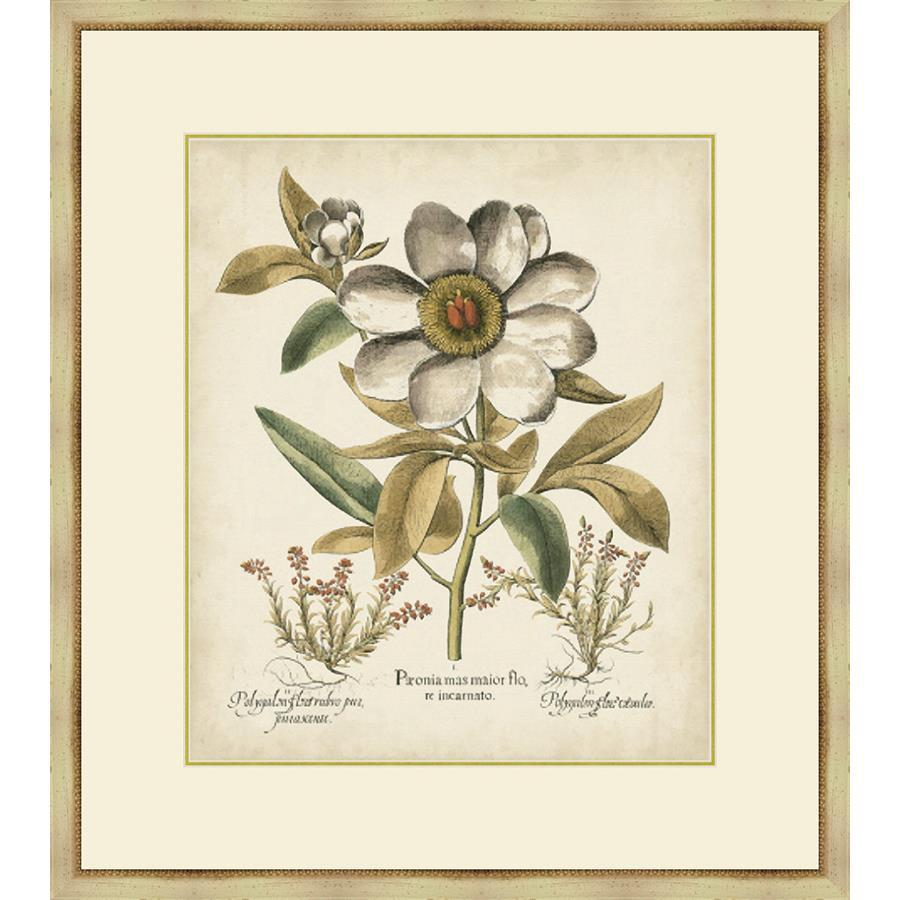 P406601 Print on Paper, Under Glass, Framed in Frame#1560-55 (Traditional Antique Ivory & Gold) Top Mat: Ivory Bottom Mat: Felt Gray
