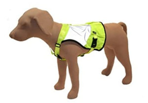 Stunt Puppy glow harness