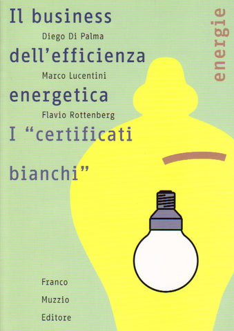 Il business dell'efficienza energetica