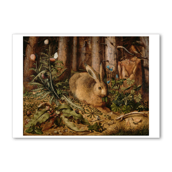 "Hoffman - <i>A Hare in the Forest</i> - 5"" x 7"" Note Card"