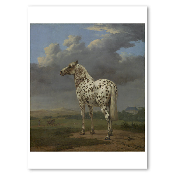 "Potter - <i>The Piebald Horse</i> - 5"" x 7"" Notecard"
