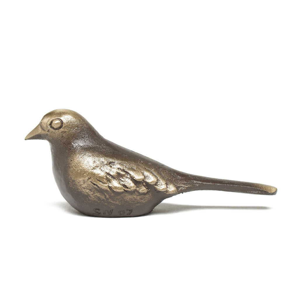 Little Bronze Bird with Long Tail