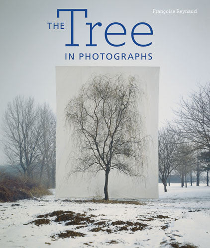 The Tree in Photographs | Getty Store