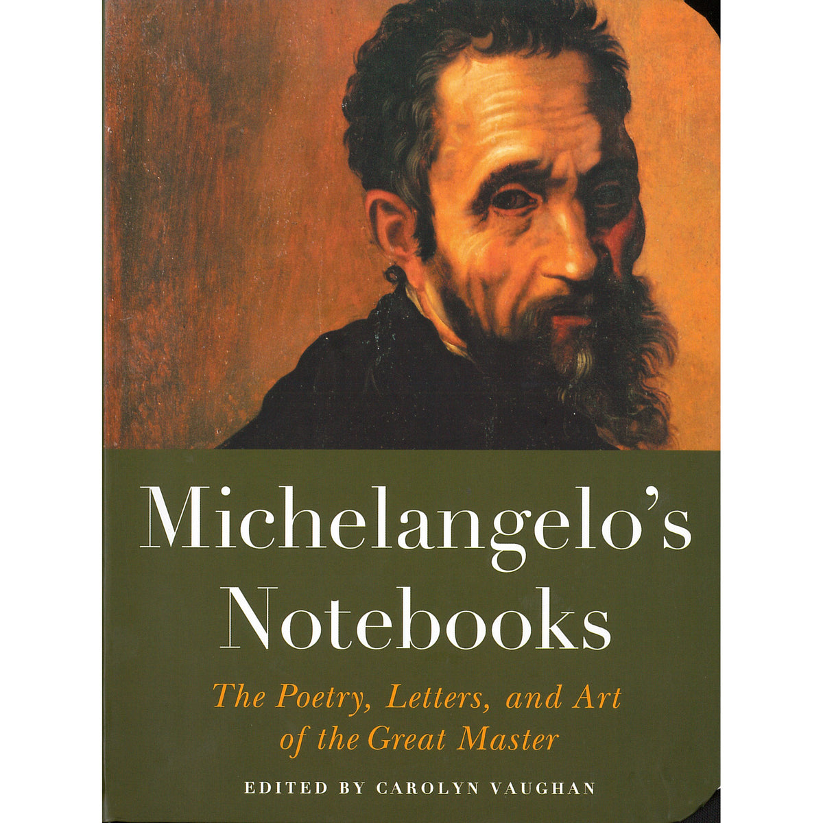 Michelangelo's Notebooks: The Poetry Letters and Art of the Great Master