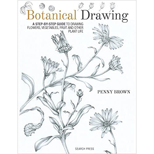 Botanical Drawing A Step-by-Step Guide to Drawing Flowers Vegetables Fruit and other Plant Life