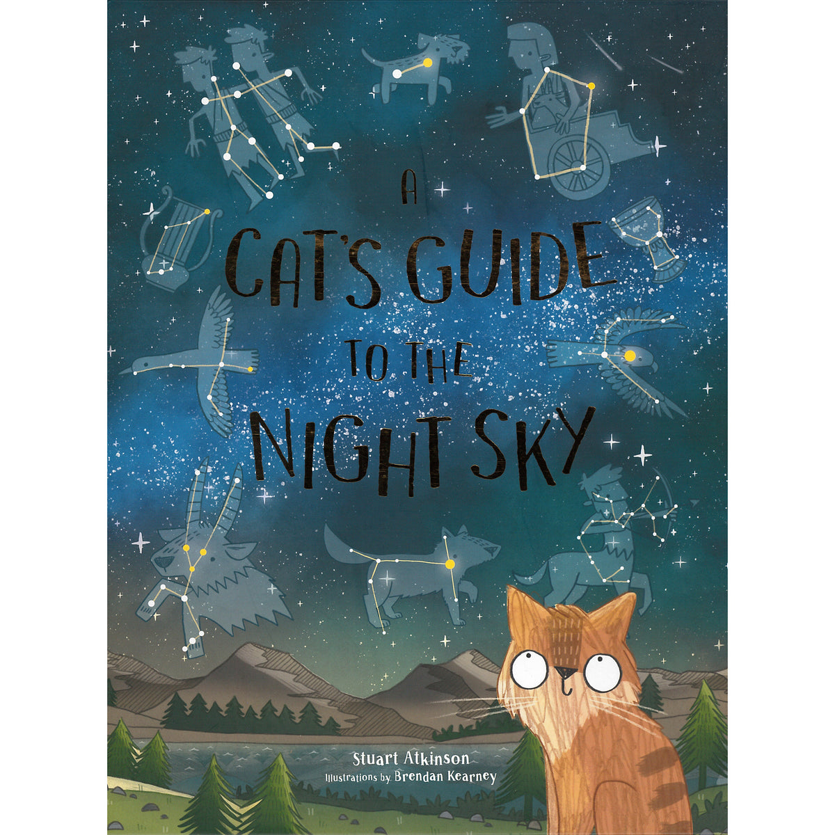 A Cat's Guide to the Night Sky | Getty Store