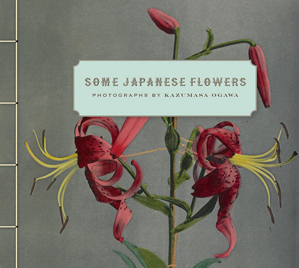 Some Japanese Flowers: Photographs by Kazumasa  | Getty Store