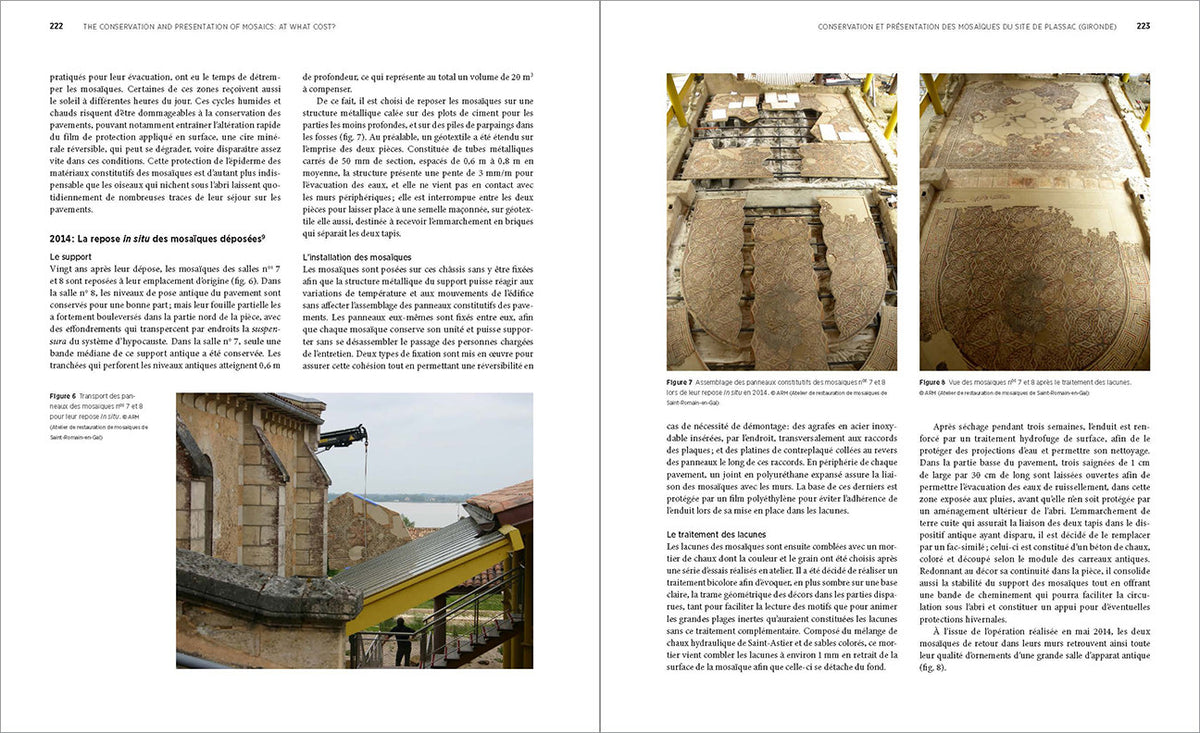 The Conservation and Presentation of Mosaics: At What Cost? Proceedings of the 12th Conference of the International Committee for the Conservation of Mosaics, Sardinia, October 27–31, 2014 | Getty Store