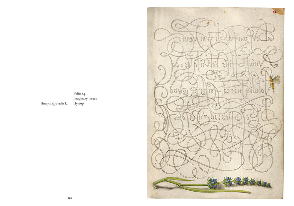 Mira Calligraphiae Monumenta: A Sixteenth-Century Calligraphic Manuscript Inscribed by Georg Bocskay and Illuminated by Joris Hoefnagel, Second Edition