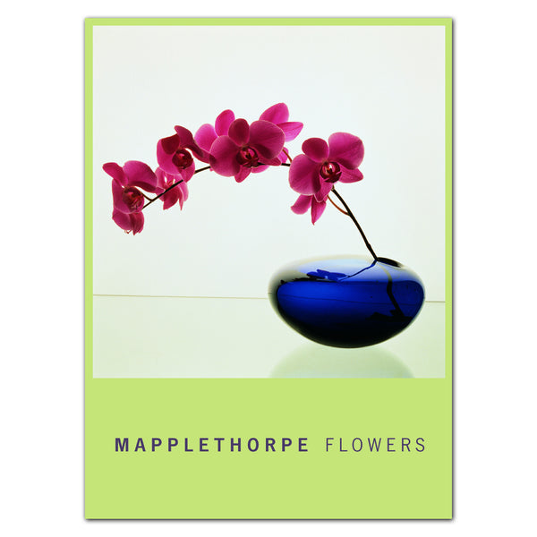 Mapplethorpe Flowers - Boxed Note Cards