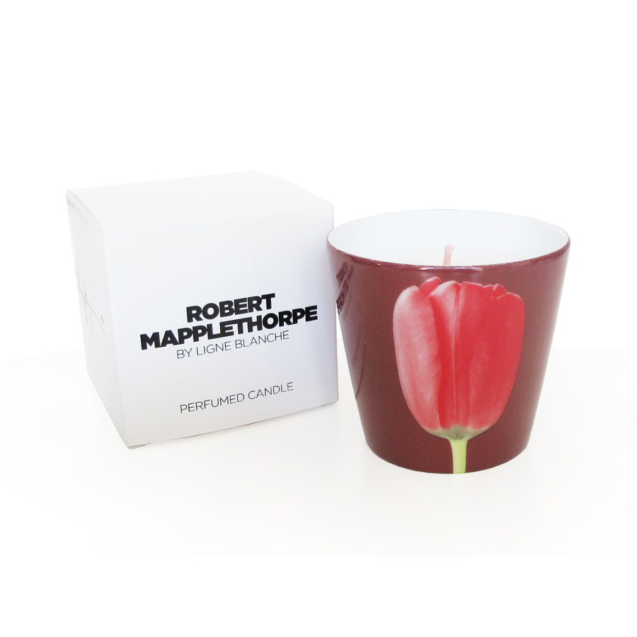 Limoges Porcelain Scented Candle - <i>Tulip</i> by Robert Mapplethorpe