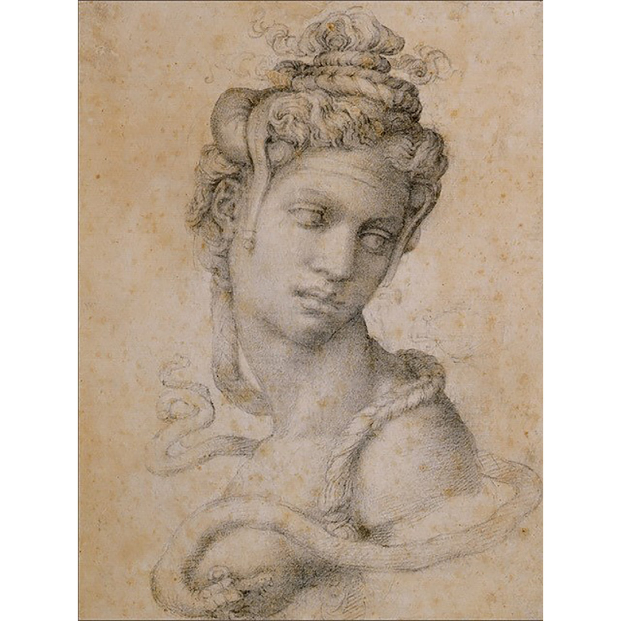 Sketchbook Journal- Michelangelo's Drawing of Cleopatra | Getty Store