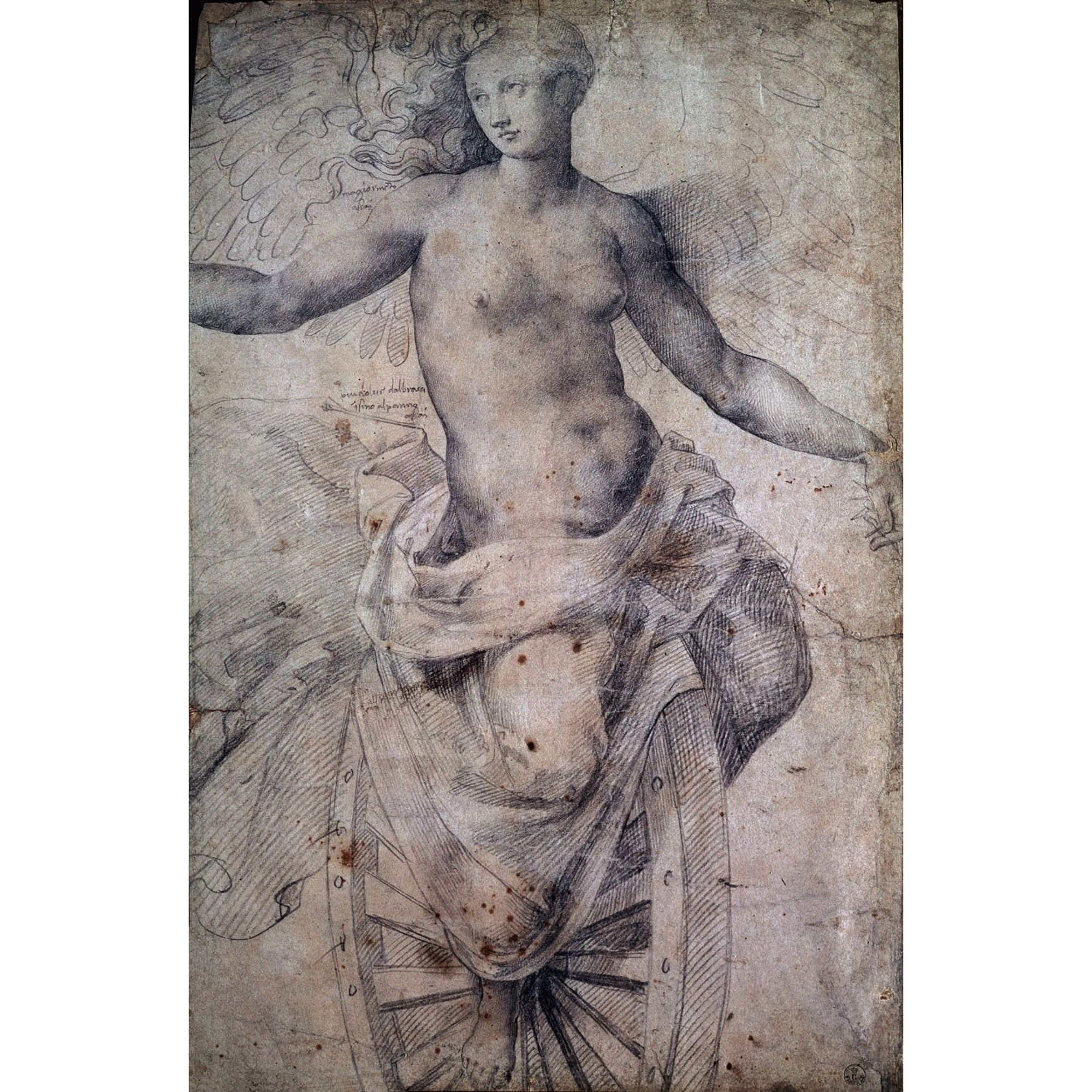 Sketchbook Journal- Michelangelo's Drawing of La Fortuna | Getty Store