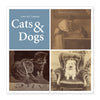 Getty 2017 Mini Wall Calendar - Cats & Dogs
