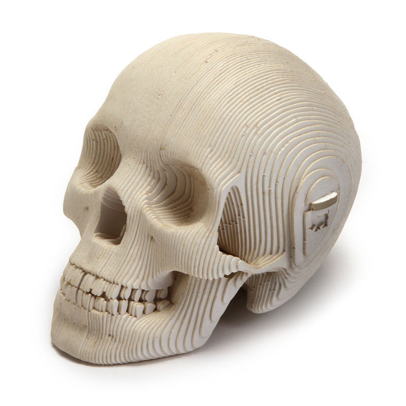"White Cardboard Mini Skull Kit (3 1/2"" H)"