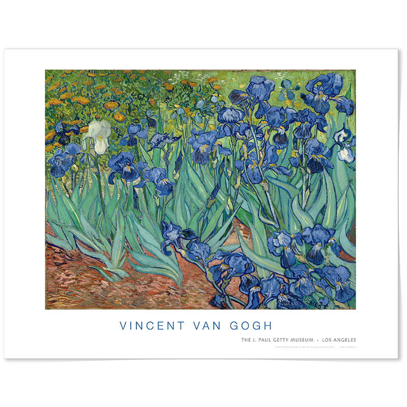 Van Gogh Irises - Poster | Getty Store