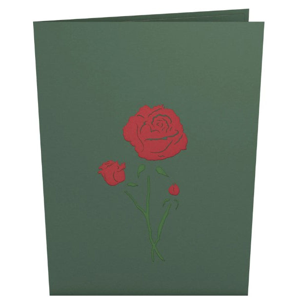 Pop-Up Notecard - Red Rose Blossom