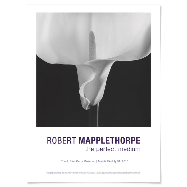 Robert Mapplethorpe - Calla Lily - Giclée Poster
