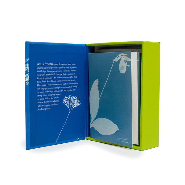 Anna Atkins Boxed Note Cards