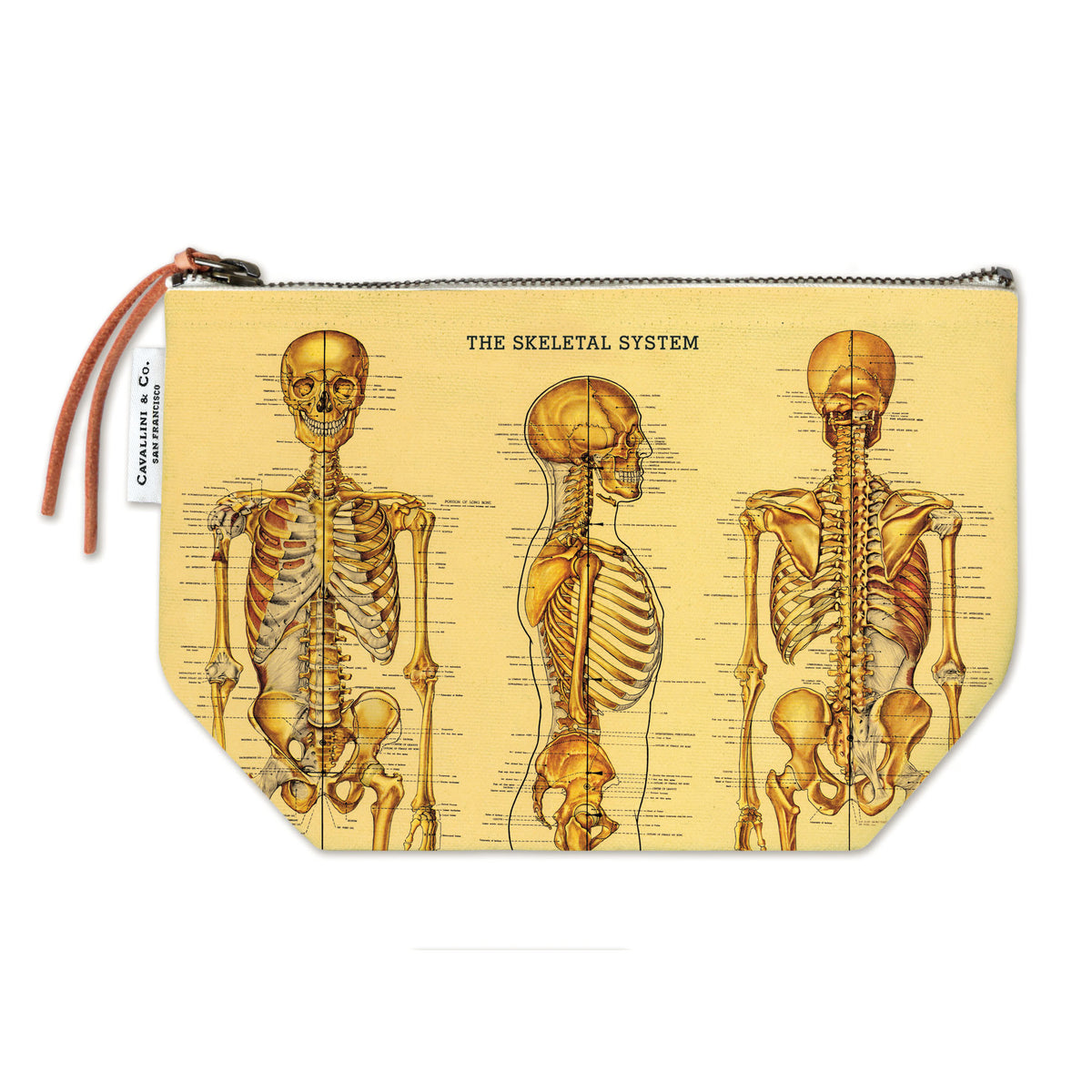 Zippered Skeleton Pouch