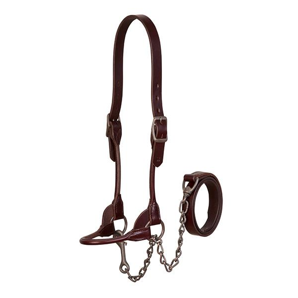 Weaver Brown Bombshell Show Halter Farm & Ranch - Show Supplies Weaver Teskeys