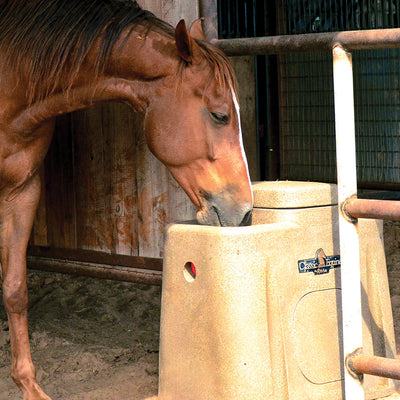 Classic Equine AutoFount Farm & Ranch - Barn Supplies - Buckets & Feeders Classic Equine Teskeys