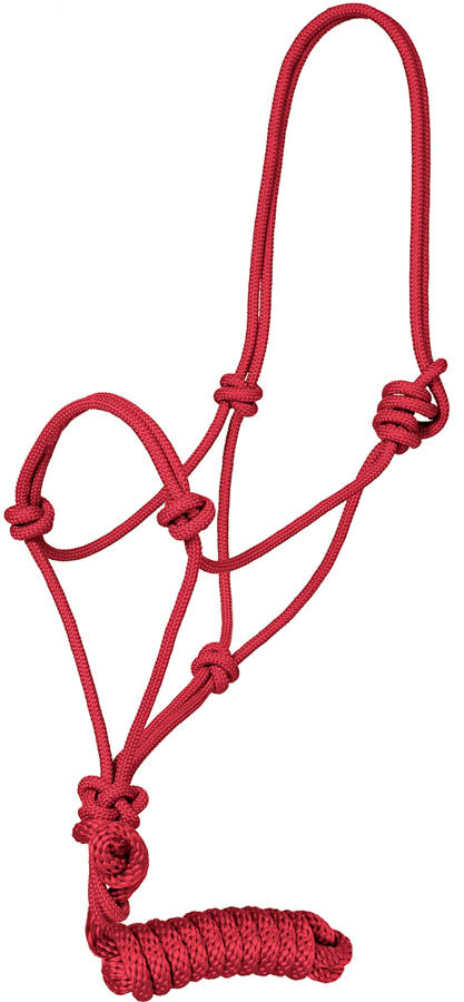 Traditional Rope Halter Tack - Halters & Leads - Halters Teskey's Teskeys