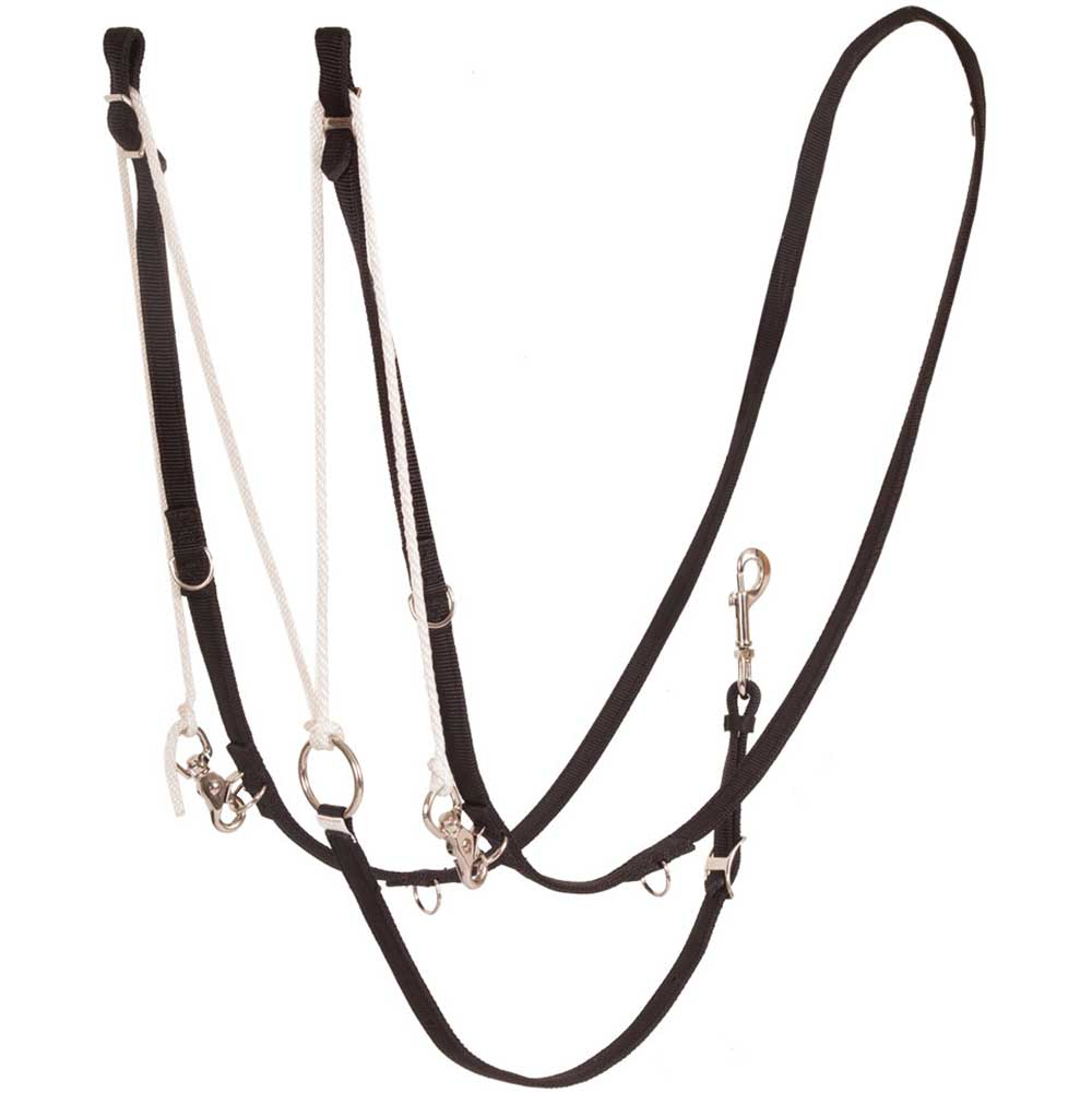 German Martingale Tack - Training Teskey's Teskeys