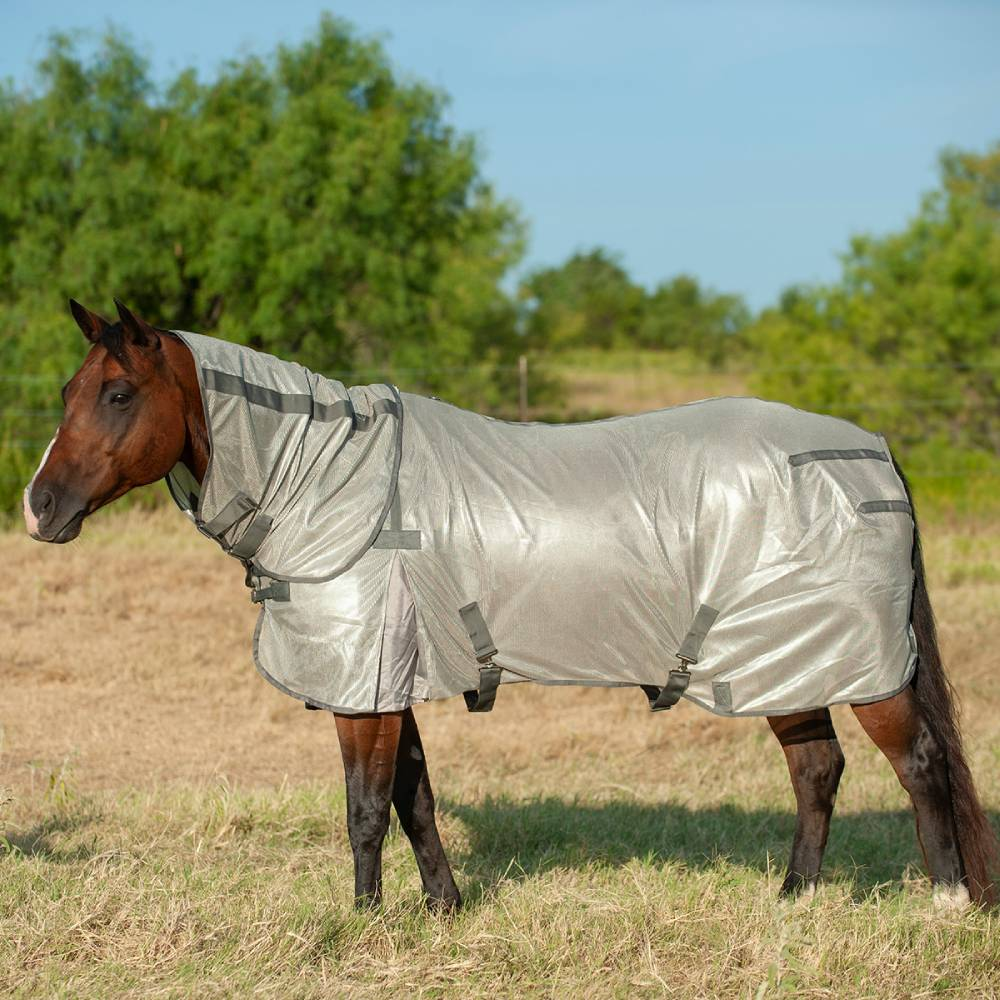 Cashel Econo Fly Sheet With Neck Guard FARM & RANCH - Animal Care - Equine - Fly & Insect Control - Fly Masks & Sheets Cashel Teskeys