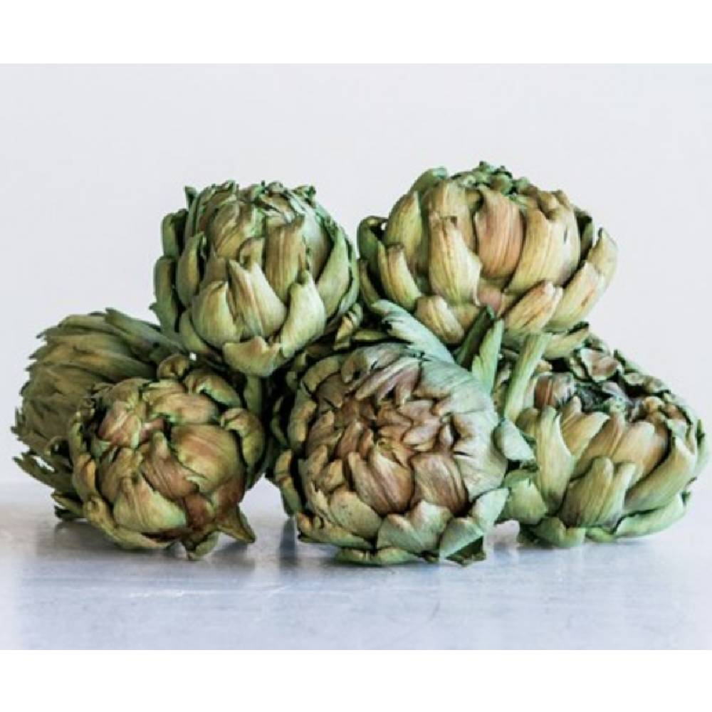 Decorative Natural Dried Artichokes Set - Various Sizes HOME & GIFTS - Home Decor - Decorative Accents Creative Co-Op Teskeys