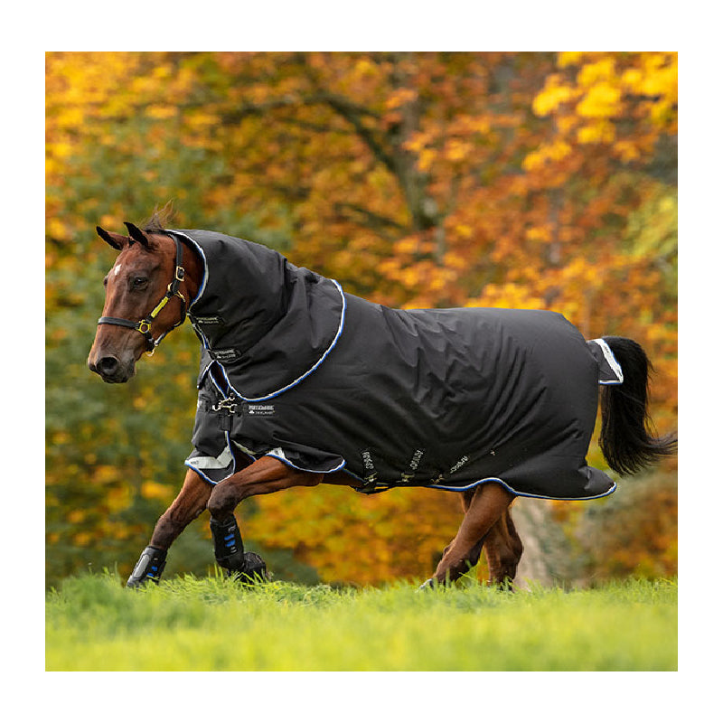 Amigo® Bravo 12 Plus (250g Medium) Tack - Blankets & Sheets - Turnout Horseware Teskeys