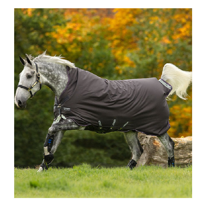 Amigo® Bravo 12 Wug (250g Medium) Tack - Blankets & Sheets - Turnout Horseware Teskeys