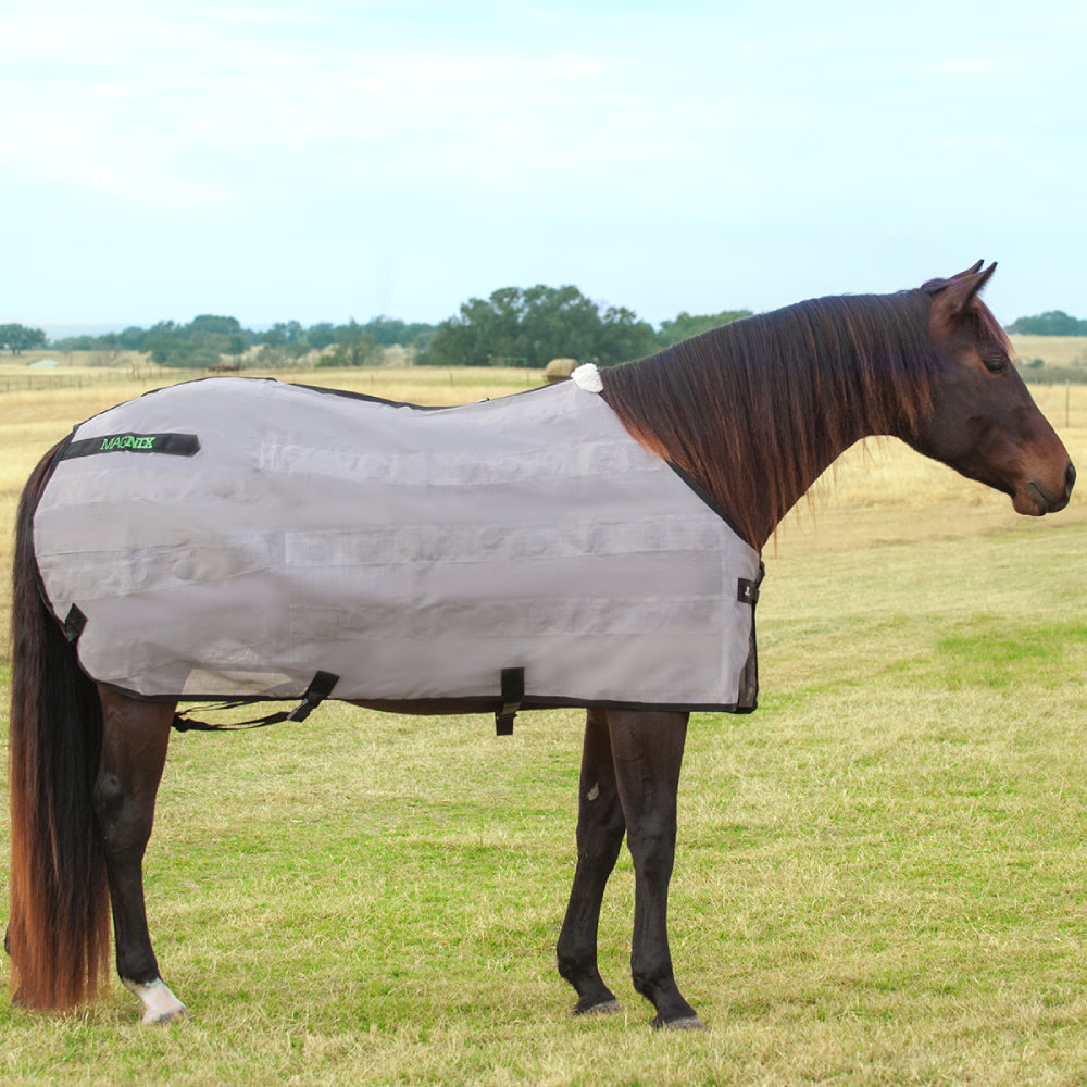 Classic Equine MagNTX Sheet Tack - Blankets & Sheets - Stable Classic Equine Teskeys