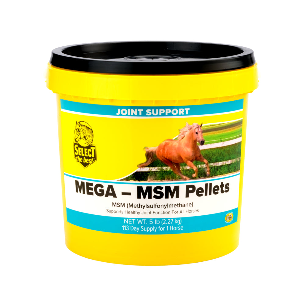 Mega MSM Pellets FARM & RANCH - Animal Care - Equine - Supplements - Joint & Pain Select the Best Teskeys