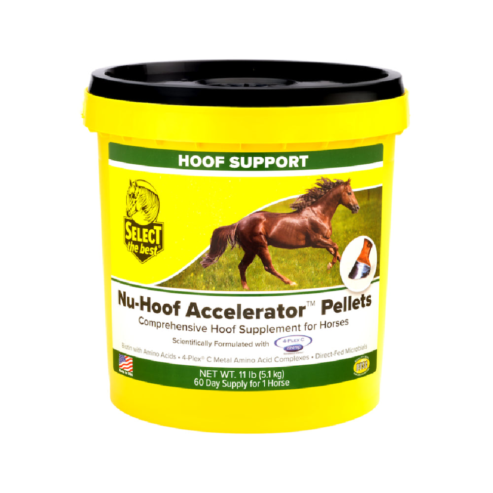 Nu-Hoof Accelerator FARM & RANCH - Animal Care - Equine - Supplements - Vitamins & Minerals Select the Best Teskeys