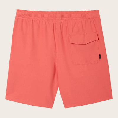 O'Neill Solid Volley Boardshorts MEN - Clothing - Surf & Swimwear La Jolla Sport USA DBA O'Neill Teskeys