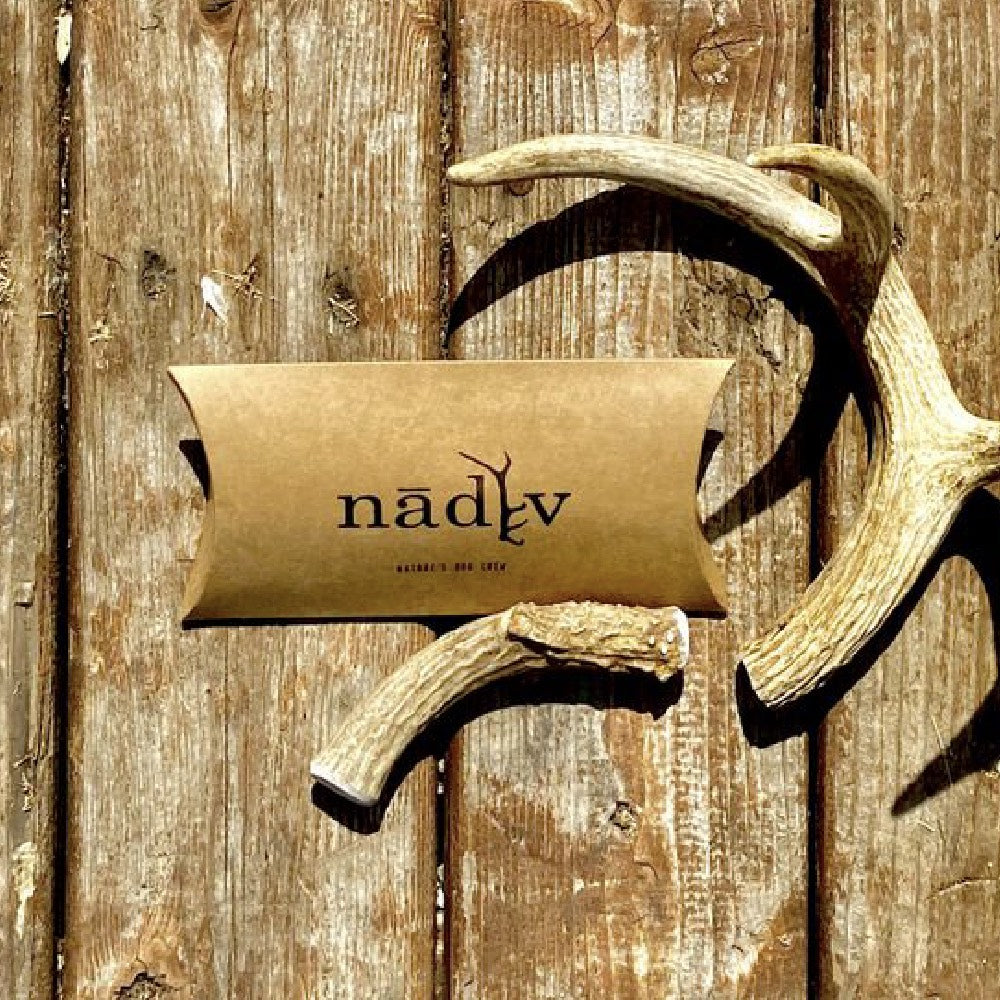 Nadiv Pets Medium Antler Dog Chew FARM & RANCH - Animal Care - Pets - Toys & Treats Nadiv Pets Teskeys