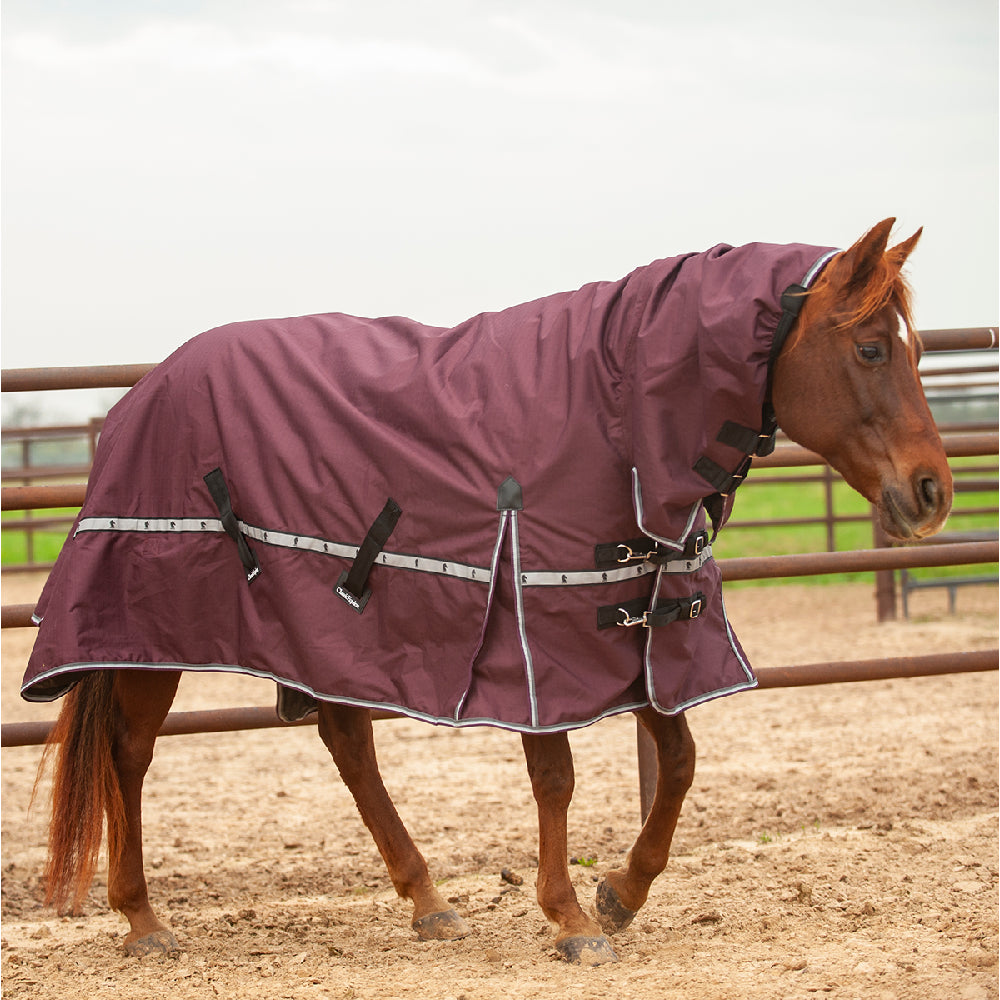 Classic Equine 5K Cross Trainer Hooded Blanket Tack - Blankets & Sheets - Turnout Classic Equine Teskeys