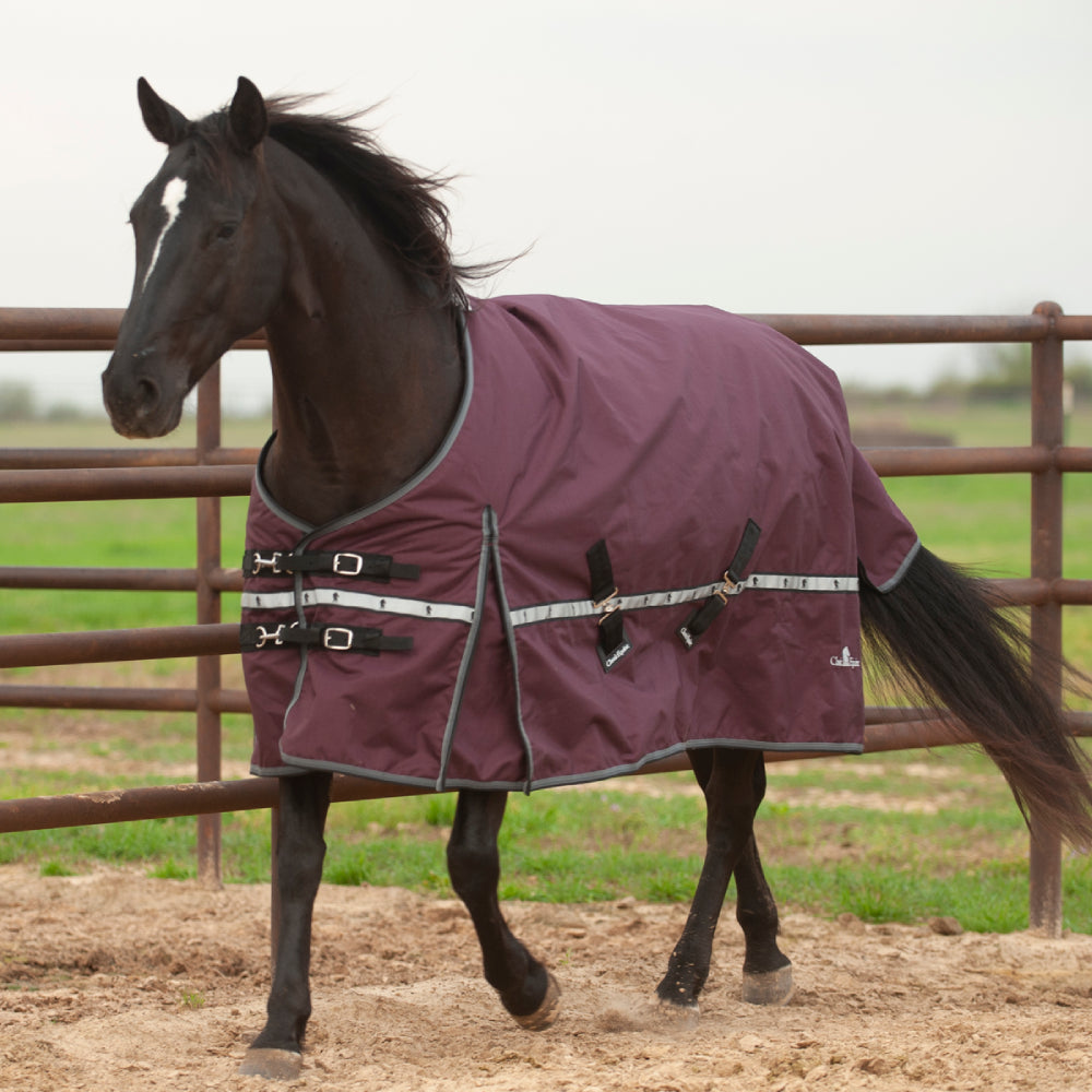Classic Equine 5K Cross Trainer Blanket Tack - Blankets & Sheets - Turnout Classic Equine Teskeys
