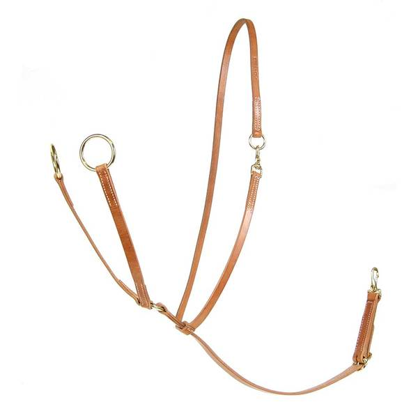 Professional's Choice AD Big Ring Martingale With Sliding Neckstrap Tack - Training Professional's Choice Teskeys