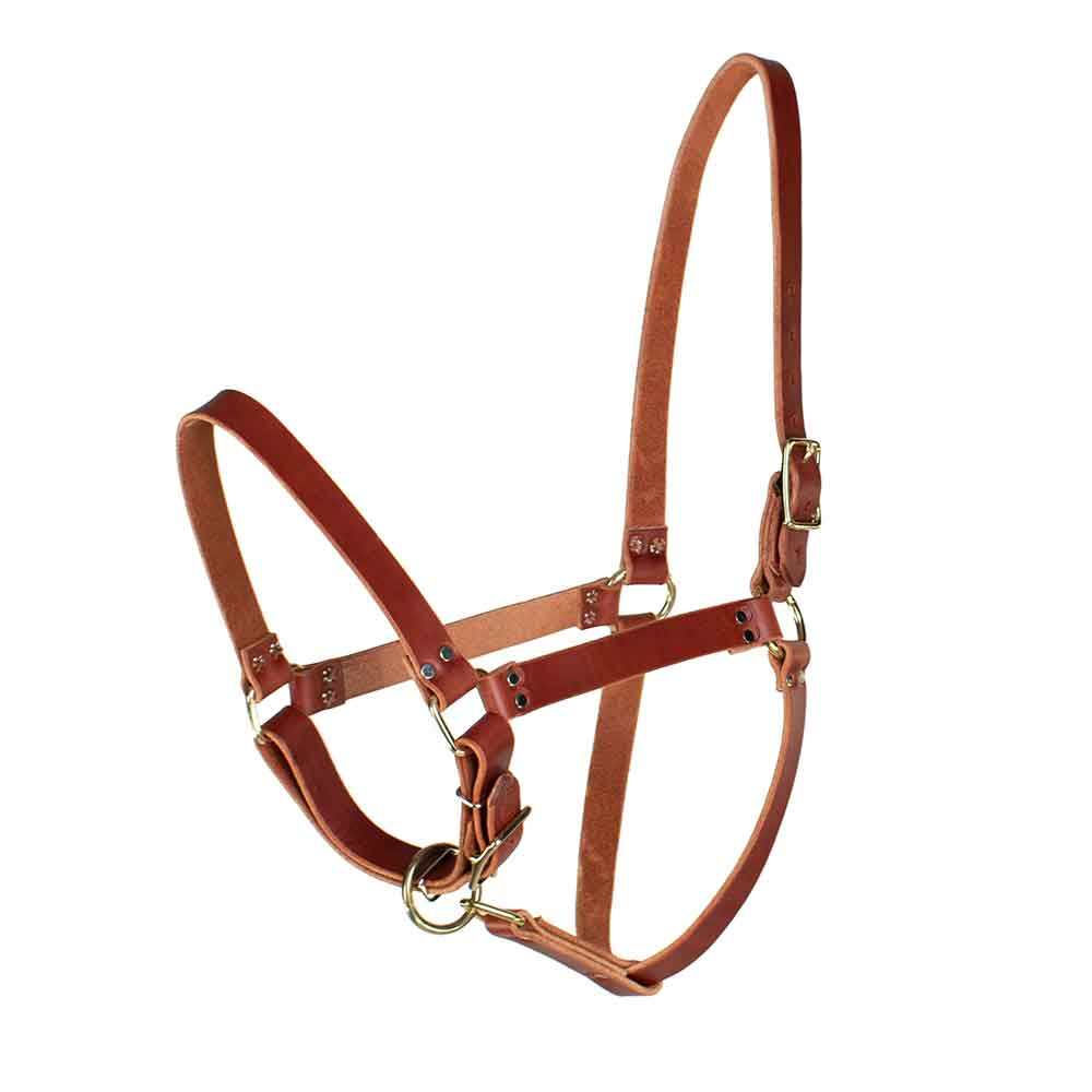 Teskey's Riveted Halter Tack - Halters & Leads Teskey's Teskeys