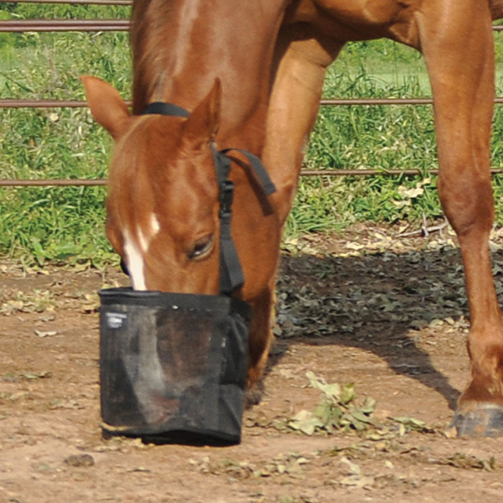 Cashel Feed Rite Bag Farm & Ranch - Barn Supplies - Buckets & Feeders Cashel Teskeys