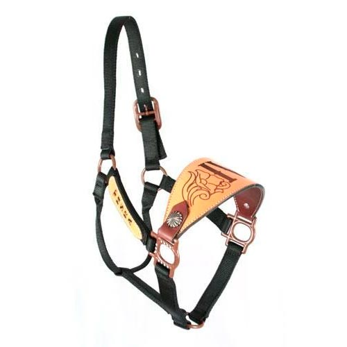 Trophy Bronc Nose Nylon Halter #24 CUSTOMS & AWARDS - HALTERS Teskeys Teskeys