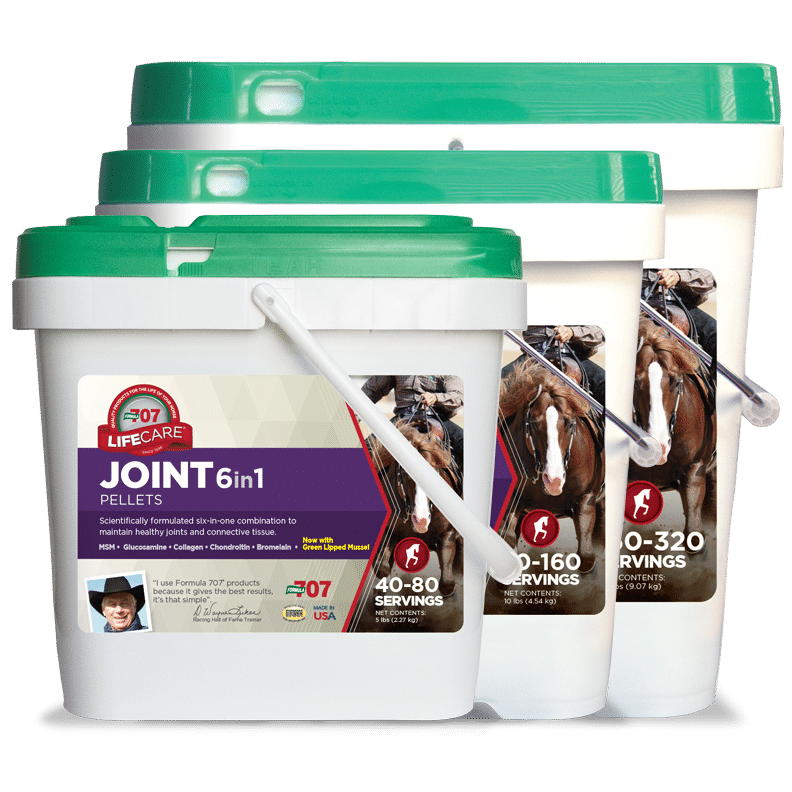 Joint 6 in 1 FARM & RANCH - Animal Care - Equine - Supplements - Joint & Pain Formula 707 Teskeys