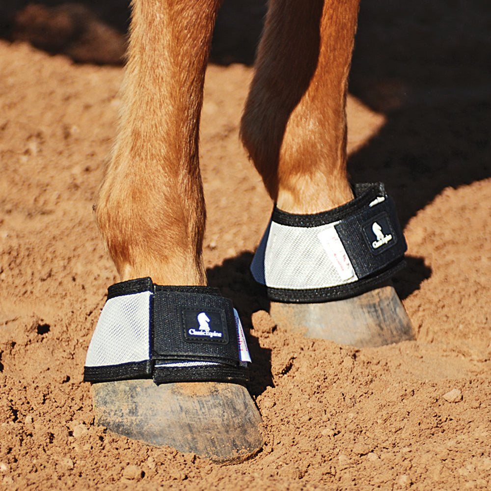 Classic Equine MagNTX Bell Boots Tack - Leg Protection - Bell Boots Classic Equine Teskeys